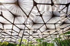 Pavilion Architecture