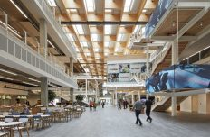 Sky Central: A transformative workplace